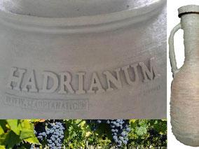 MAG Lifestyle Magazin Vinum Hadrianum Italienischer Naturwein Amphoren Orange Wein Weinspezialtäten Italien antikes Rom Weinberg Winzer Piero Pavone