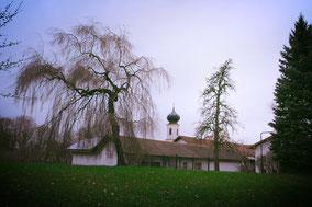 Erlebnisbauernhof, Bauernhof, Stimmung, Frühling, Alpakahof, Lamahof, Familie, Ausflug, Kinder, Kinder in München, Freizeit