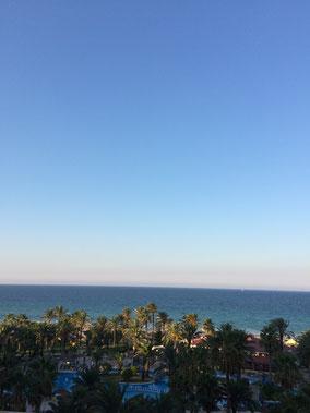 Tunesien, Palmen und Meer