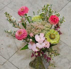 Blumenzustellung Wien Zinnien
