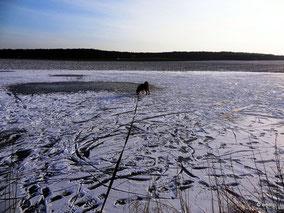 Der Kanal ist zugefroren