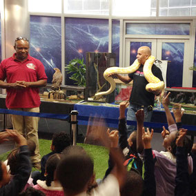 Animal showcase. Environmental education and awareness. Python.