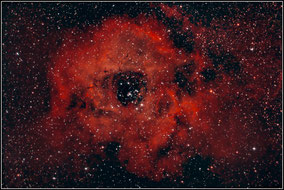 NGC 2237 • NGC 2238 • NGC 2239 • NGC 2244 • NGC 2246 Rosettennebel