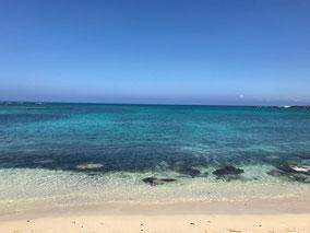 ハワイの海へごあいさつ