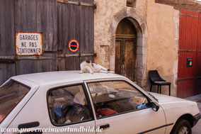 Bild: Riez, Alpes de Haut Provence