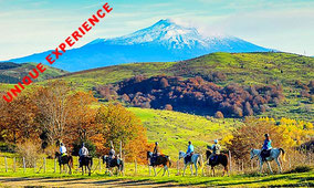 Horseback Riding in Sicilian Countryside + Lunch at Farmhouse on Etna Slope