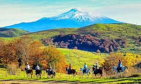 Индивидуальная экскурсия - Катание на лошадях на склонах Этны и традиционный сицилийский  обед на природе