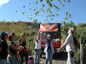 Multiday tour of Enta wineries in small group or private