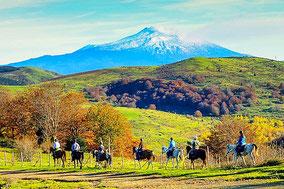Индивидуальная экскурсия на агроферму у подножия Этны, катание на лошадях на склонах Этны и традиционный сицилийский обед на природе