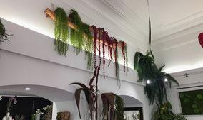 ornement-floral-domicile-lieu-de-vie-bureau-professionnel