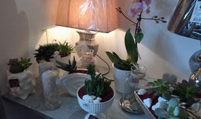 artisan-fleuriste-beaumes-de-venise-lundi-mardi-mercredi-jeudi-vendredi-samedi-dimanche