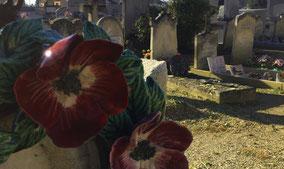 plaque-mortuaire-couronnes-fleurs-vase-granit