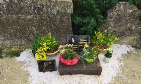 cavurne-cimetiere-cremation-urne