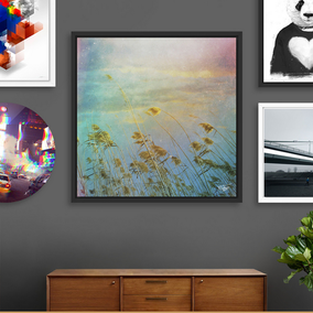 SHOP MY PHOTOS AS ART PRINTS, FRAMED ART PRINTS, ALUMINUM PRINT, ACRYLIC GLASS PRINTS AND THE EXCLUSIVE EDITION DISK PRINTS