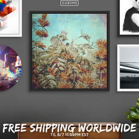 FREE SHIPPING WORLDWIDE IN MY CURIOOS SHOP IN ALL WALL ART, YOU CAN SHOP MY PHOTOS AS ART PRINTS, FRAMED ART PRINTS, ACRILIC GLASS PRINTS, ALUMINUM PRINTS AND THE EXCLUSIVE DISK PRINTS