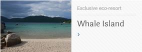 Whale Island Diving - Dive Vietnam