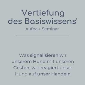 Aufbau-Seminar Vertiefung des Basiswissens