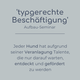 Aufbau-Seminar typgerechte Beschäftigung