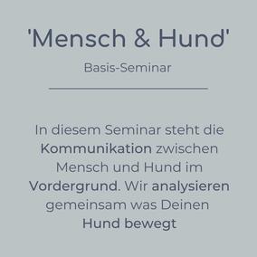 Basis-Seminar Mensch & Hund