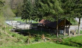 Forellenzucht - Jordi-Hof Bewirtung und Übernachtung auf dem Bauernhof in Ochlenberg