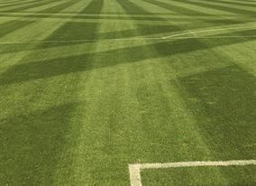 Fussball Sportrasen Unterhalt