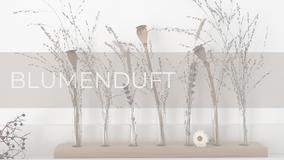 Moderne Vasen für Deine Blumendeko