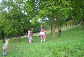 Bergheuriger Schuecker, Wald und Wiesen, Panoramaterrasse