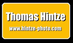 Thomas Hintze