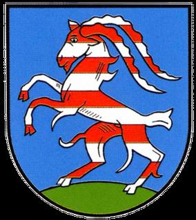 Wappen der Ortschaft Buntenbock
