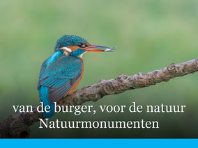 Interview CFO Natuurmonumenten