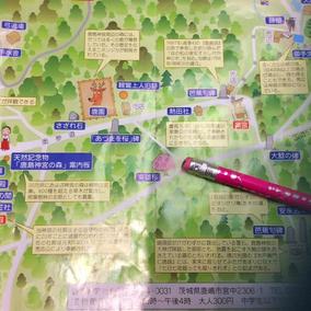 東雄桜の 鹿島神宮の 地図です。