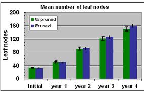 Fig. 13 Number of leaf nodes
