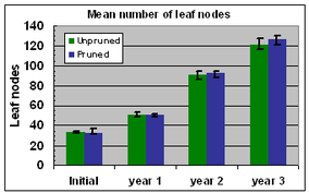 Fig. 9 Number of leaf nodes