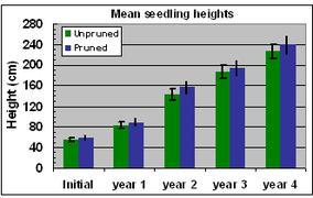 Fig. 12 Seedling heights
