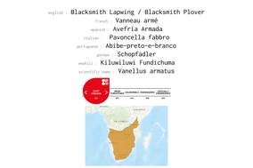 distribution of Blacksmith Plover
