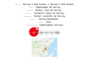 distribution of harvey's duiker