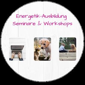 Mit einem klick aufs Bild gelangst du direkt zur Energetik-Ausbildung, Seminare und Workshops Inhalte!