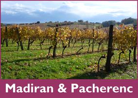madiran & pacherenc wines