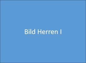 TTF 81 Schomburg e.V. Herren I