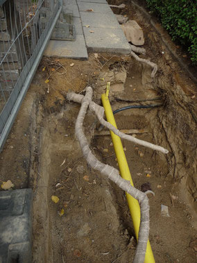 Wurzelschutz bei einer Baumaßnahme.