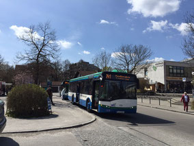 Zwei Busse, eine Richtung, unterschiedliche Ziele. Das kann verwirren. Foto: SPD-Taufkirchen