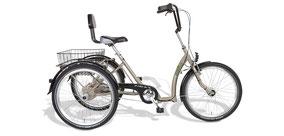 Ein Dreirad fördert ergonomisches Fahren - Dreiräder vom Experten in der Schweiz