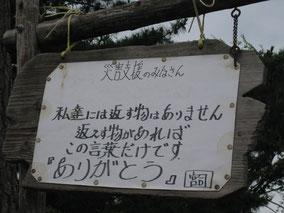 2011年7月、宮城県石巻市にて