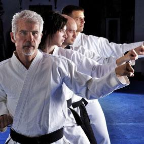 Karate Wiesler Erwachsenen