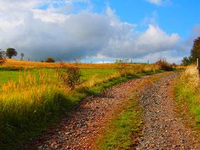 Feldwege führen meist zu den schönsten Plätzen