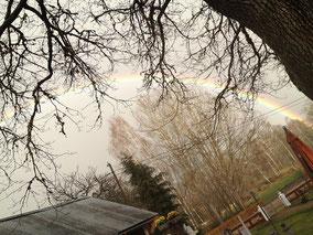 Naturkunstwerk: Regenbogen