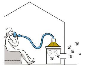 Bienenstockluftinhalation- Wellness für die Atemwege beecura (R) System