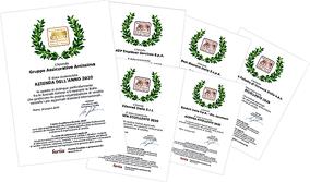 Gli Attestati di Azienda dell'Anno e Azienda Eccellente attribuiti dal Comitato Professionale dei Sales Excellence Awards 2020, Premio ideato e promosso da FORTIA.