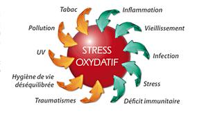 Au travail, vous vous sentez fatigué, irritable, vous avez perdu de votre concentration, vous multipliez les petits problèmes de santé… Attention, vous souffrez peut-être de stress!?
