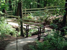 Parco Naturale di Spina Verde